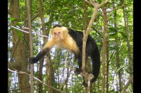 Costa Rica Adventure Family Holiday tour