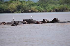 14 day family adventure to Zimbabwe