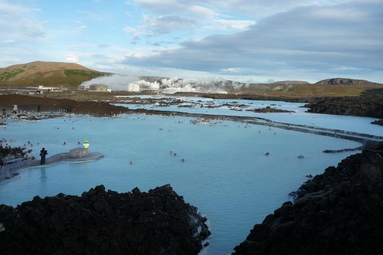 Birding Iceland tour