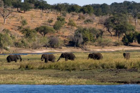 Southern African Cruise Safari: South Africa & Botswana tour