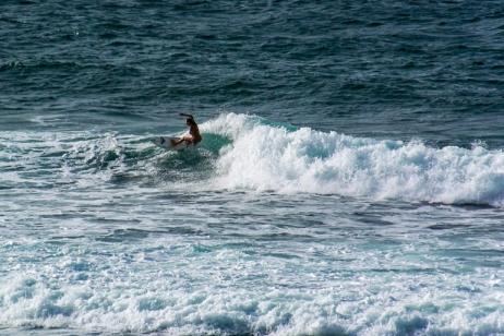 Del Mar Surf Camp tour
