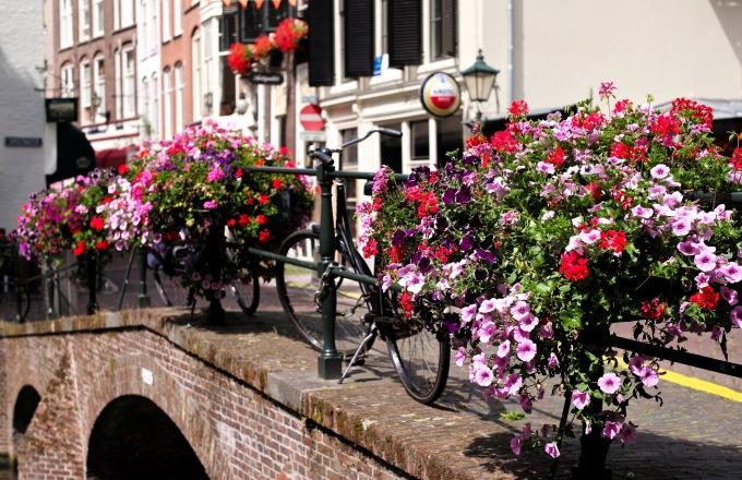Holland Biking tour