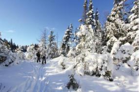 Classic Canadian Winter Adventure tour