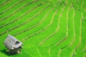 Timeless Vietnam tour