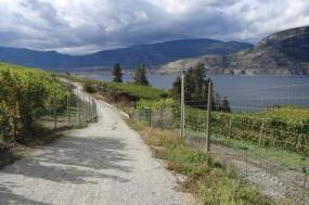Okanagan Wines and Rail Trail tour