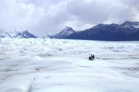El Calafate & The Glaciers tour
