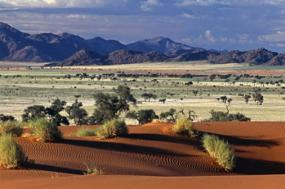Namibia At Its Best  tour