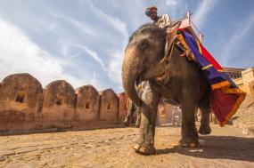Cycling through Rajasthan tour