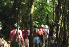 Costa Rica Tropical Adventure tour