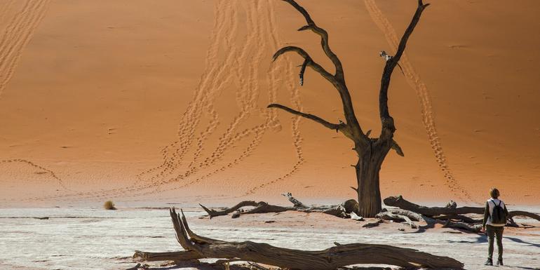 Dunes, Deltas & Falls Discoverer tour