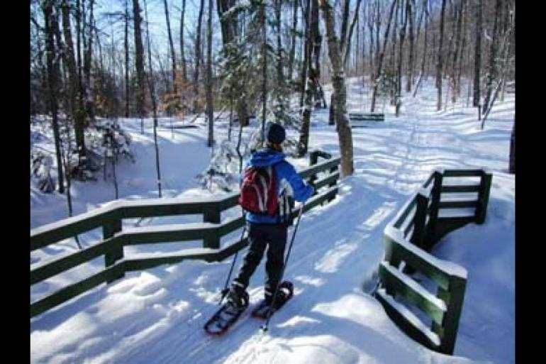 Nature & Wildlife Skiing, Snowboarding & snow sports Snowplow Inclusive package