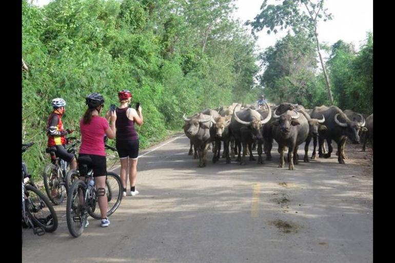 Cycle Bangkok to Rangoon tour