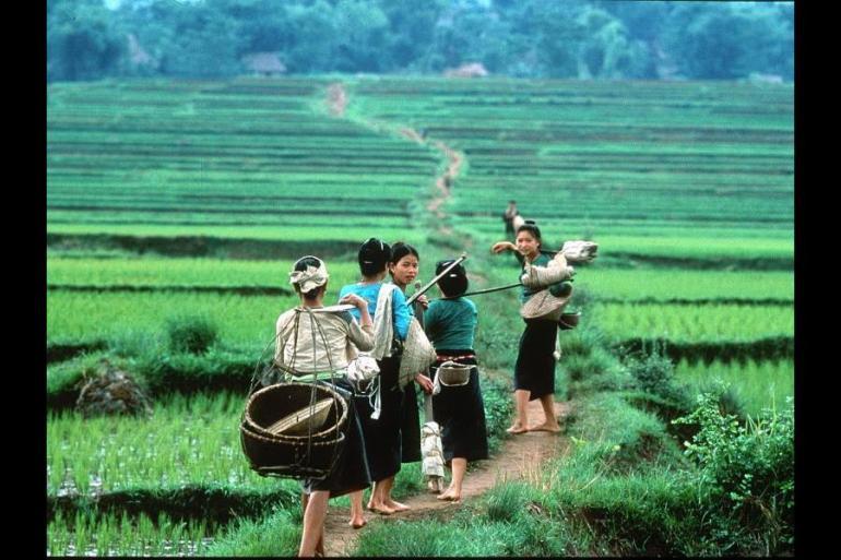 Family Vietnam Encompassed  tour