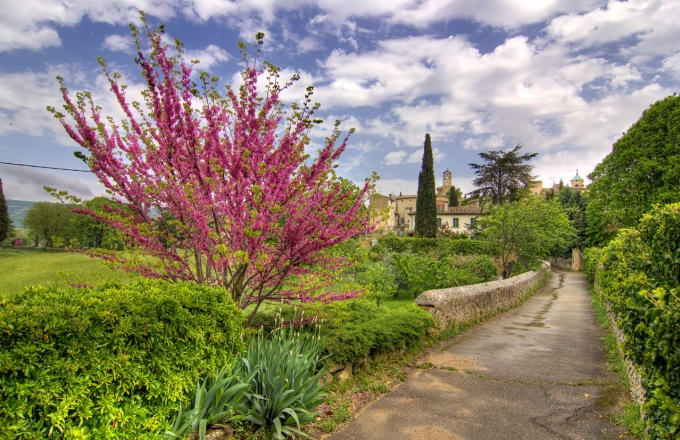 Gardens and Gastronomy in France tour