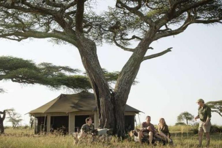 National park Safari-Africa-p