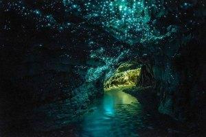 New Zealand Glow Worm Cave