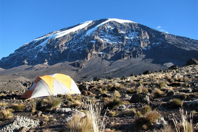 Mountain Nature of Kilimanjaro-Africa-3081356_P