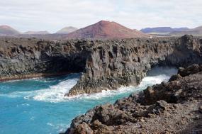 Trans-Oceanic Ecology voyage tour
