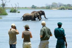 5 Day Malawi Safari