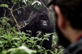 5 Day Rwanda