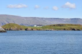 Iceland Wildlife Expedition