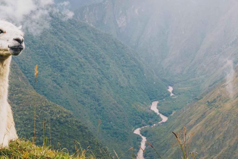Peru Essentials  tour