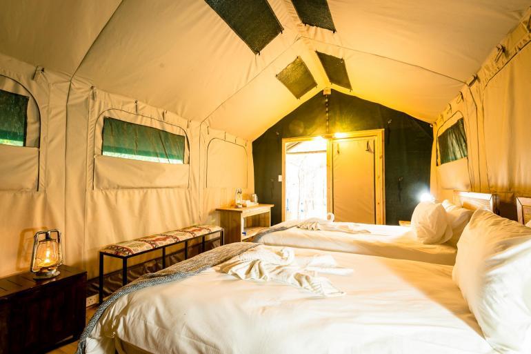 Johannesburg Kruger National Park Kruger Lodge Experience Trip