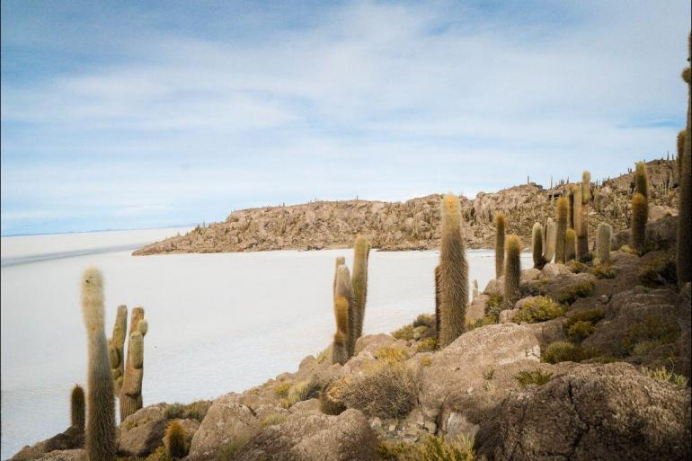 Local Immersion Historic sightseeing Bolivia Highlights package