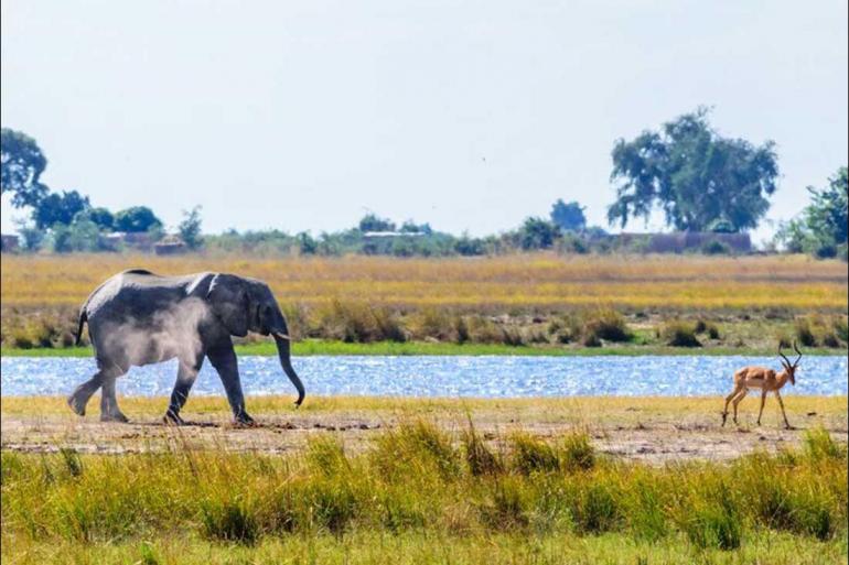 Chobe National Park Dar es Salaam Johannesburg to Zanzibar Trip