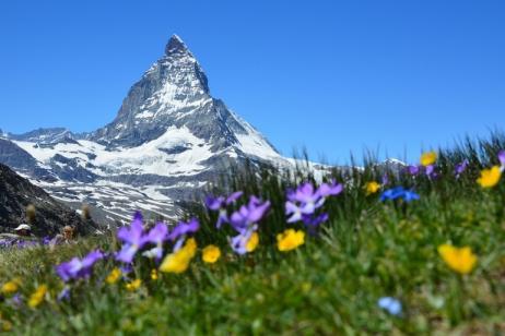 Switzerland Walking & Hiking Tour