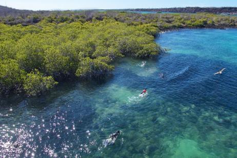 Galapagos Highlights: An Adventure among the Islands tour