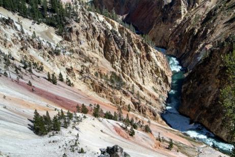 Yellowstone & Grand Teton National Parks tour