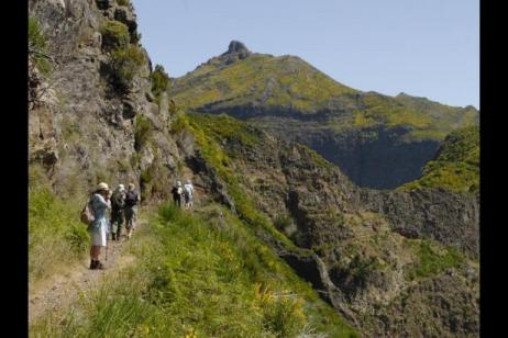 Levada Trails Of Madeira