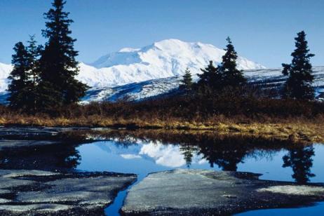 Jewels of Alaska and Cruise Verandah Stateroom (Summer 2018)