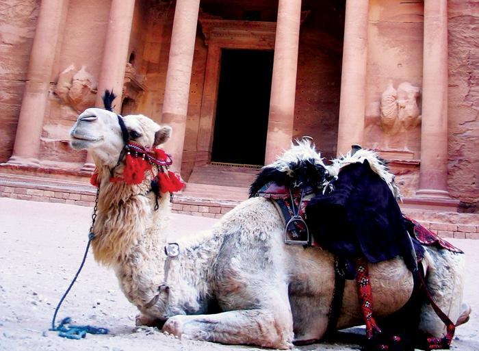 Amman Dead Sea Petra Uncovered Trip