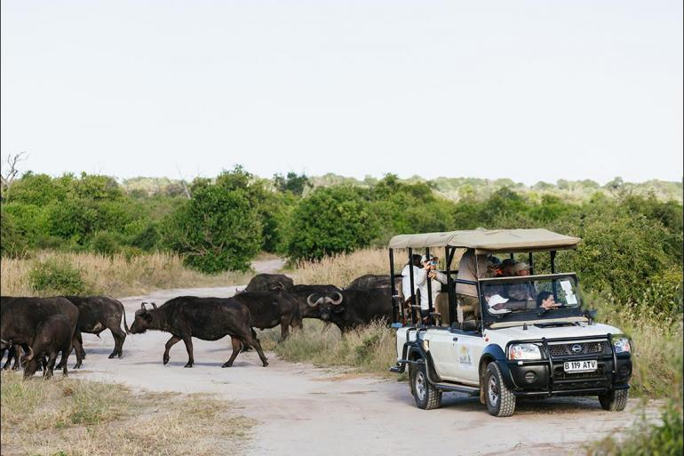 National Parks Wildlife viewing Explore Southern Africa package
