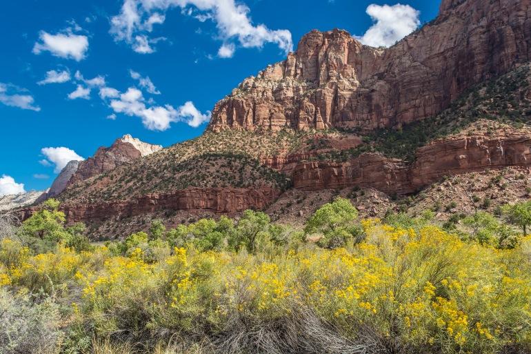 Arizona Zion National Park Grand Canyon, Sedona, Lake Powell, Bryce & Zion Trip