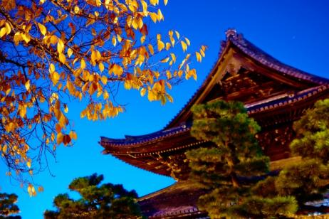 10 Day Highlights of Japan & China Escapade Experience tour