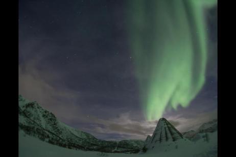 Arctic Lights & Whales tour