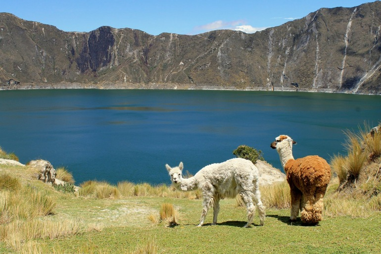 Quilotoa Mountains and Wool View, Ecuador