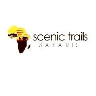 Scenic Trails Safaris