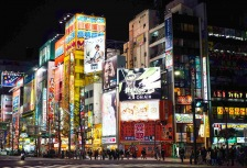 Vibrant downtown Tokyo tour