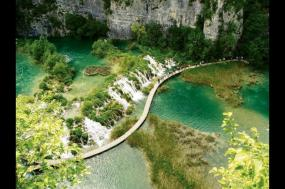 Old Dubrovnik + Dalmatian Island Cruise tour