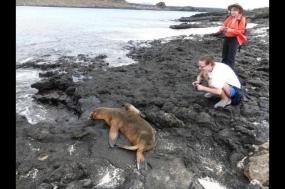 Family Ecuador and the Galapagos Adventure tour