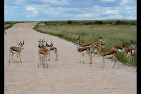 Namibia TOP Attractions