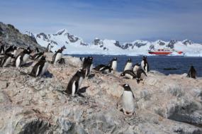 Classic Antarctica (2016-17) tour