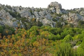 Provence Self-Guided Biking tour
