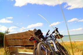 Cape Cod Bike Tours