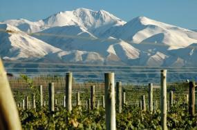 Mendoza Wine Tour tour