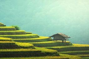 The Heart of Cambodia & Vietnam with Sapa - Southbound tour